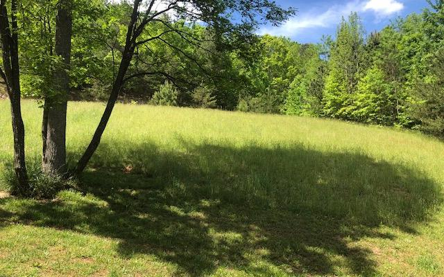 LOT 1 Summit Trace, Blairsville, GA 30512 (MLS #285298) :: RE/MAX Town & Country