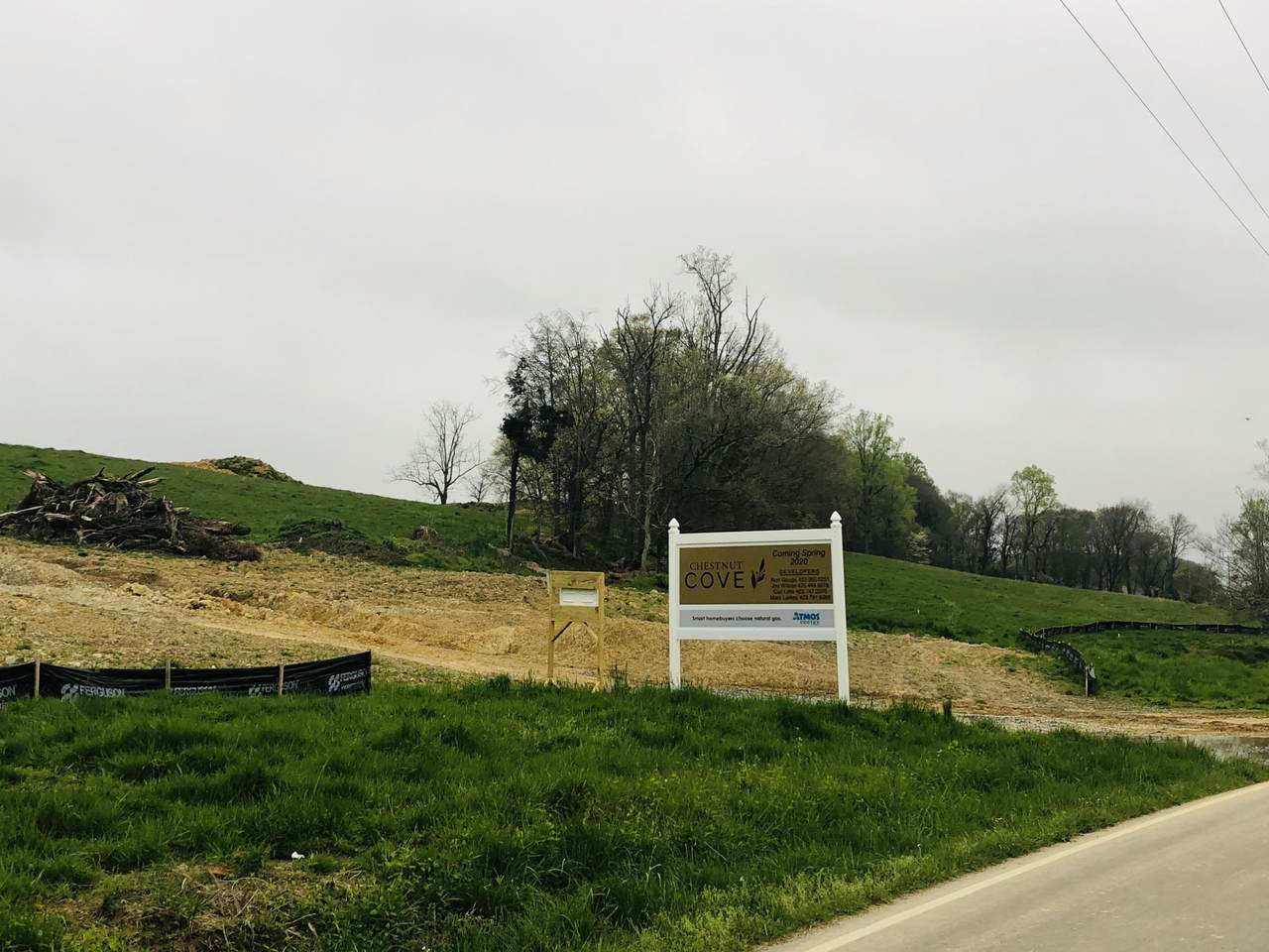 Tbd Boones Station Rd - Photo 1
