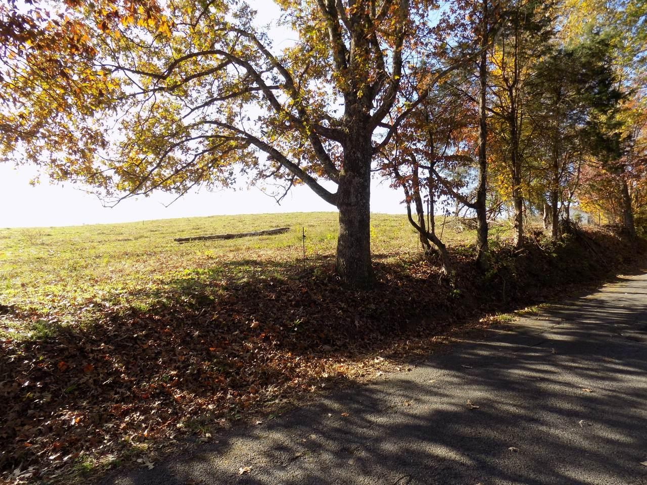 0 Morrisett Chapel Rd - Photo 1