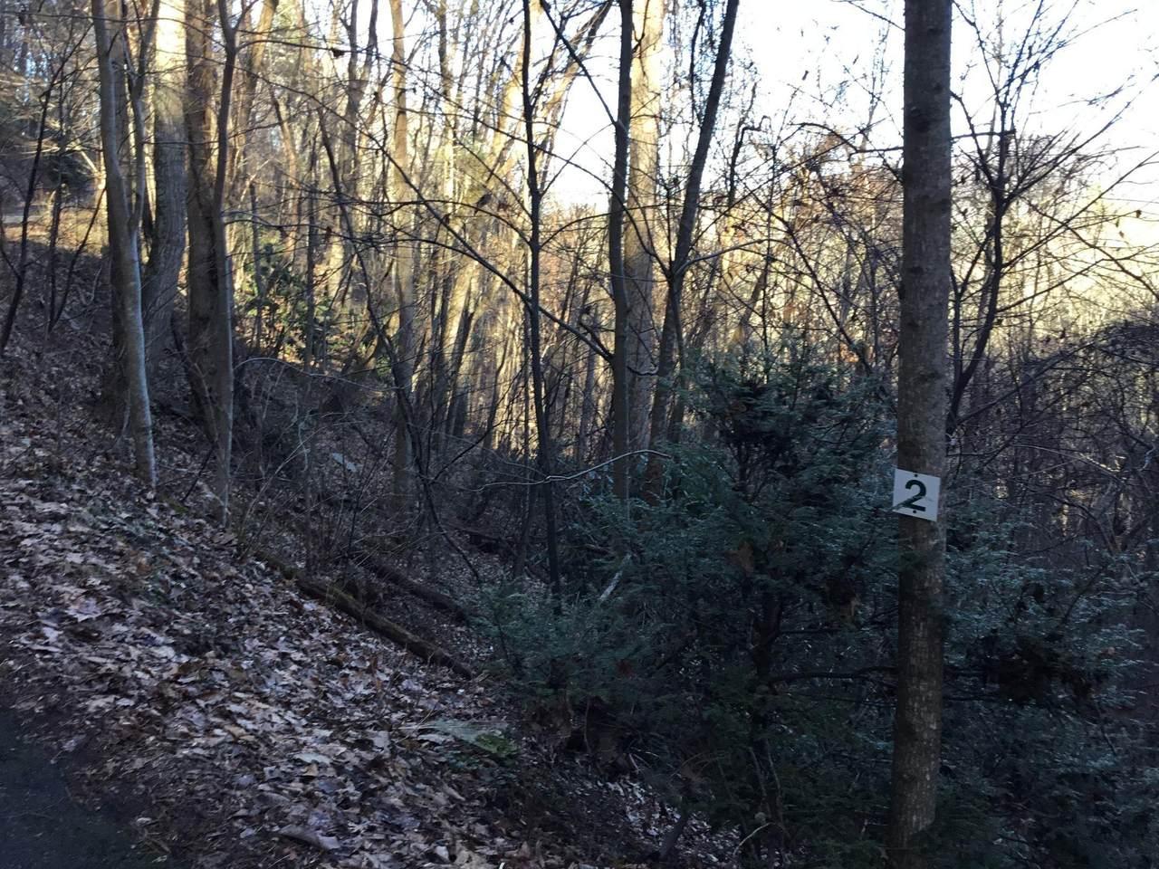 Tbd Banjo Ridge Rd Lot 2 - Photo 1