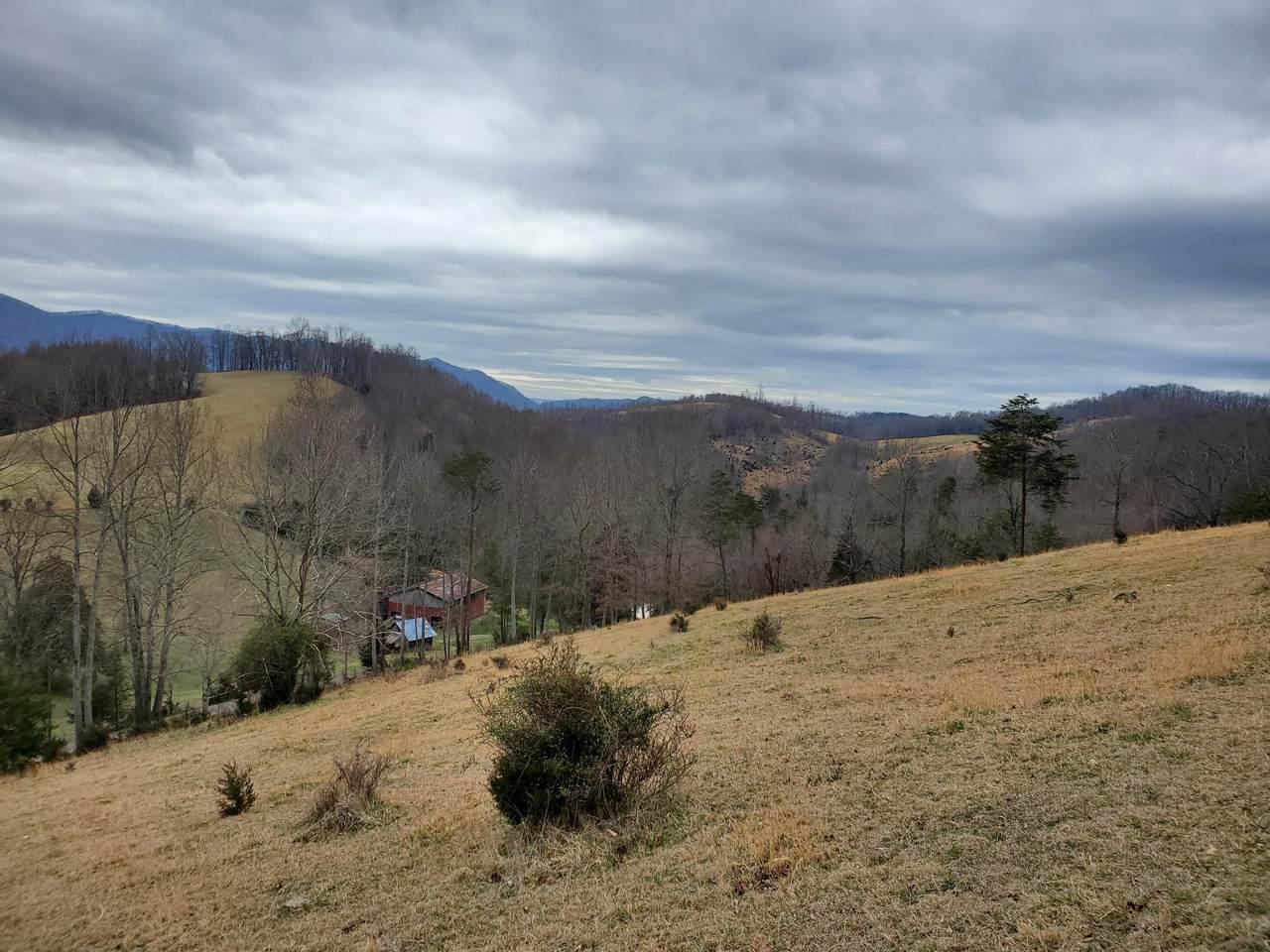 Tbd Mineral Hill Lane - Photo 1