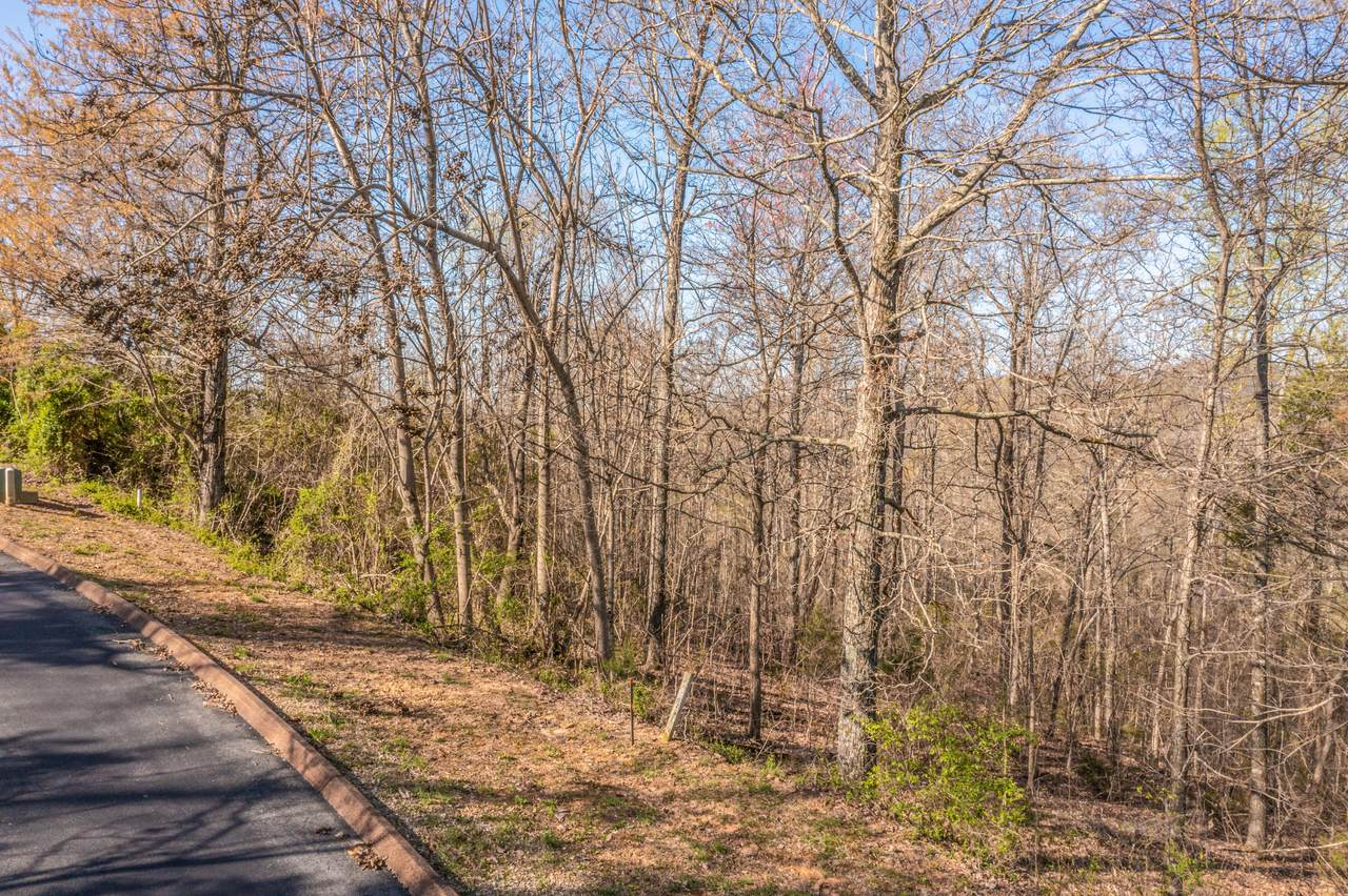 Lot 6 Shiloh Springs Road - Photo 1