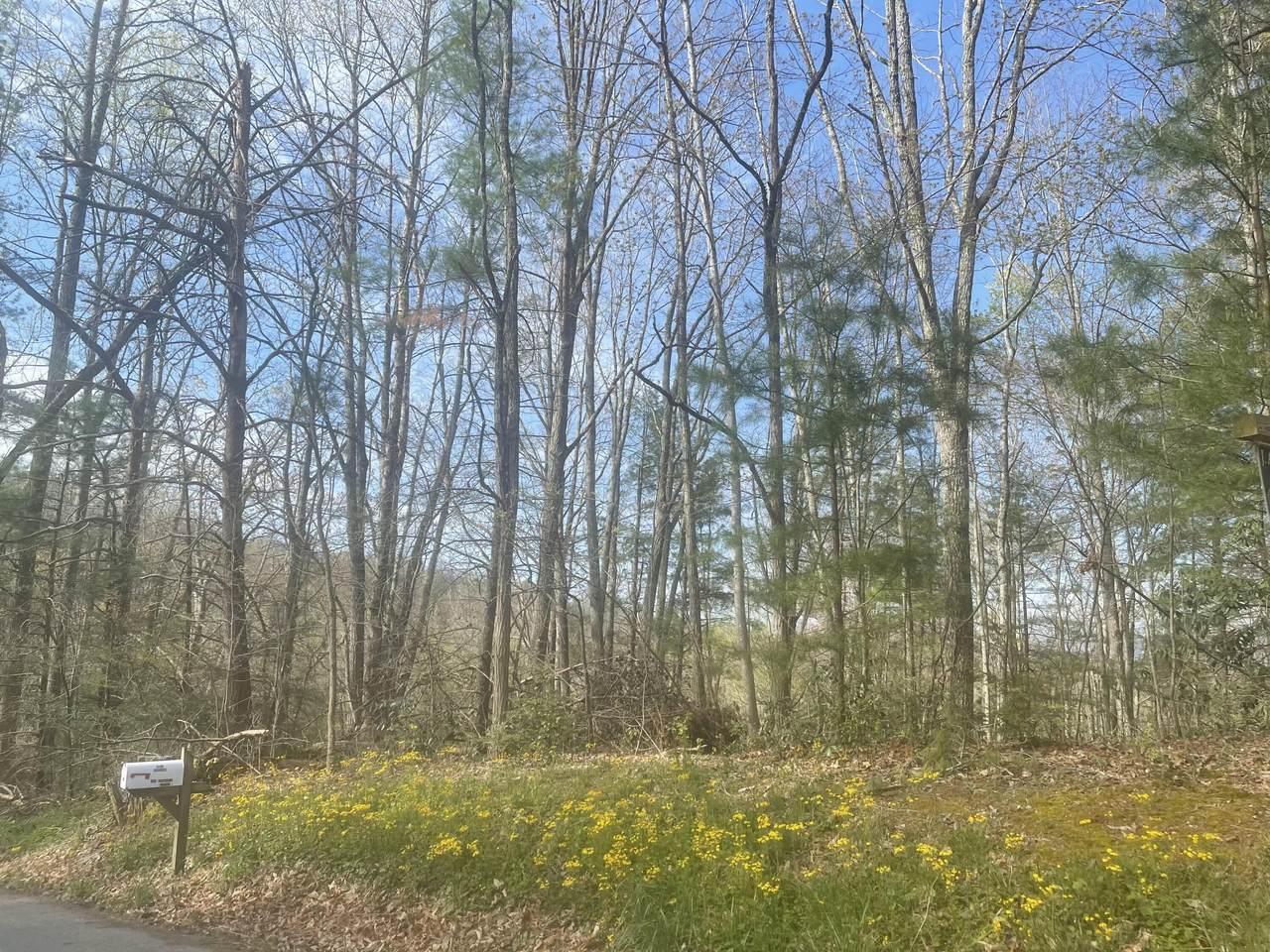 Tbd Cherokee Circle - Photo 1