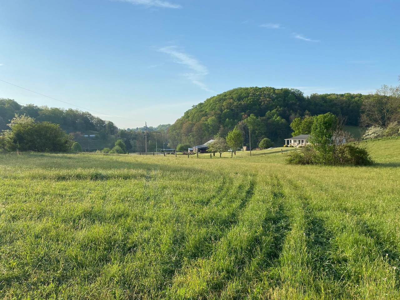 247 Side Road - Photo 1