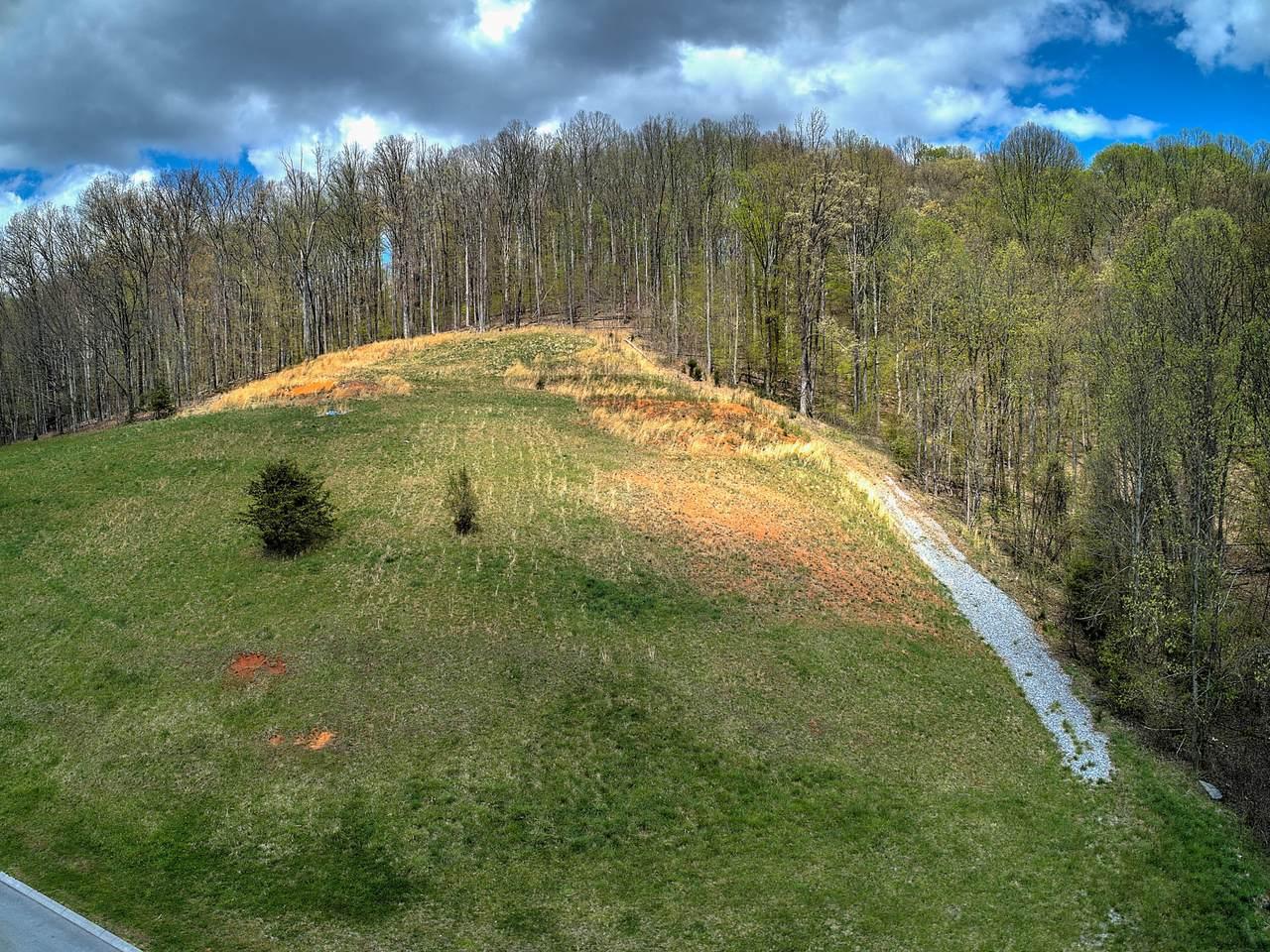 216 Old Island Trail - Photo 1