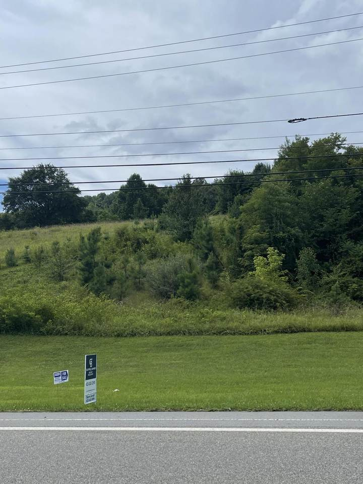 4401 Highway 11W - Photo 1