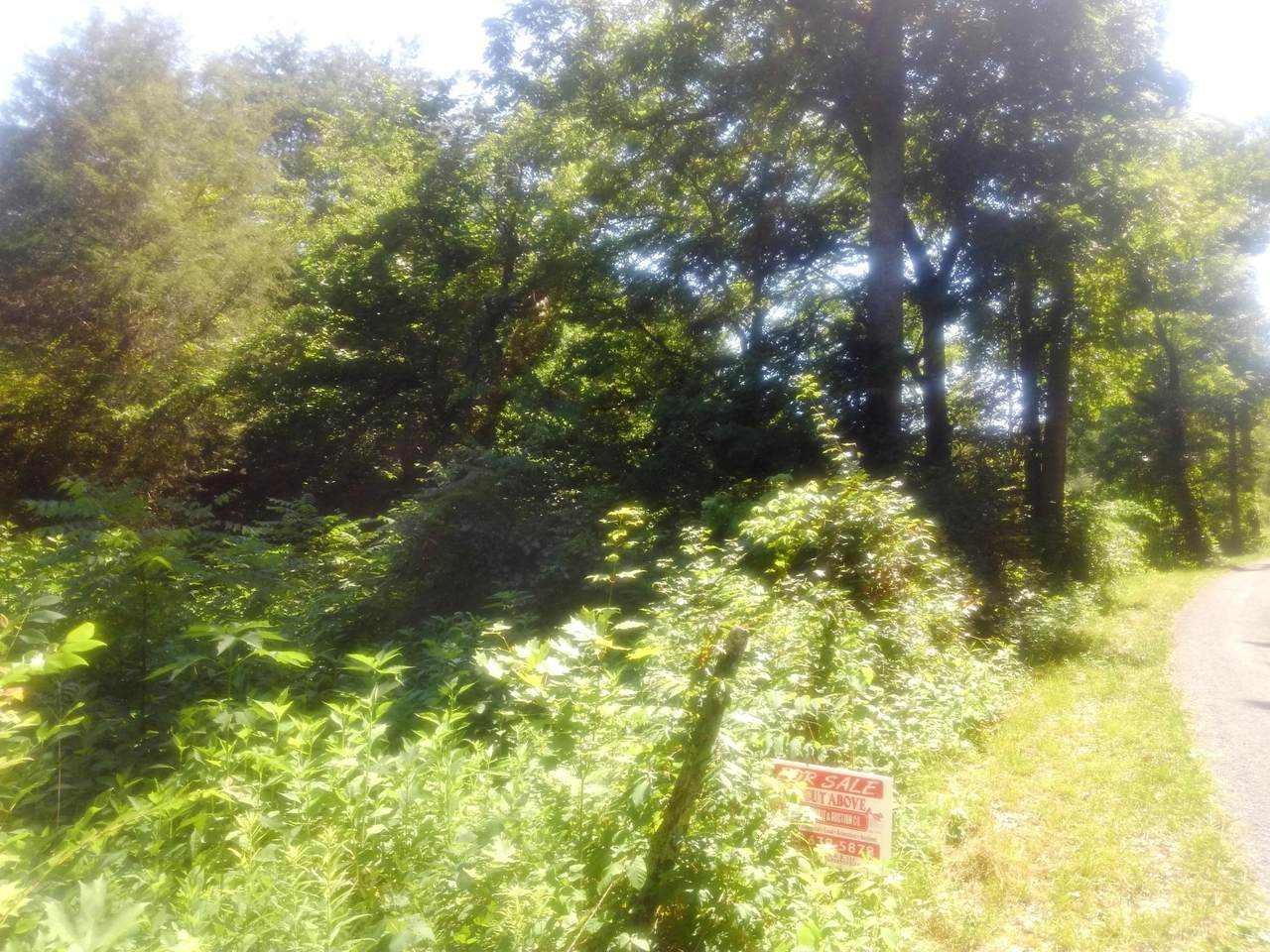 Lot 5r Smith Hollow Road - Photo 1