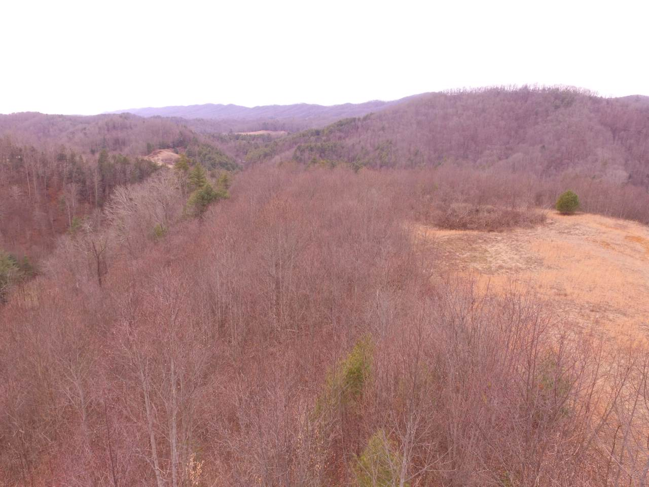 00 Greer Branch Road - Photo 1