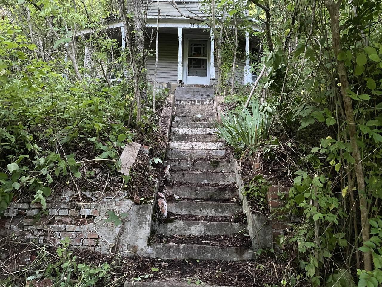 145 Cedar Branch Road - Photo 1