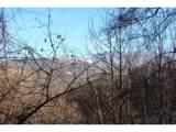 000 Fern Hill Drive - Photo 2