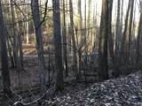 Tbd Banjo Ridge Rd Lot 39 - Photo 1