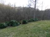 1485 Hill Station Alley Road - Photo 48