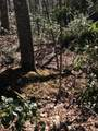 Tbd Of Forge Creek Road - Photo 3