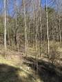 Tbd Of Forge Creek Road - Photo 5