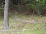 137 Poor Valley Creek Road - Photo 20