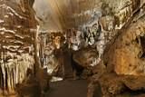 1157 Bristol Caverns Highway - Photo 31