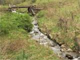 TBD Forge Creek Road - Photo 1