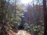 199 Gunsmoke Mountain Road - Photo 1
