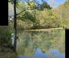 271 Iron Mountain Retreat - Photo 61