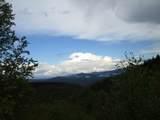 102 & 100 Wildflower Trail - Photo 49