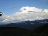 102 & 100 Wildflower Trail - Photo 50