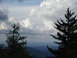102 & 100 Wildflower Trail - Photo 51