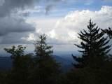 102 & 100 Wildflower Trail - Photo 52