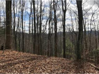 0 Fall Branch Rd, Mountain City, TN 37683 (MLS #387622) :: Jim Griffin Team