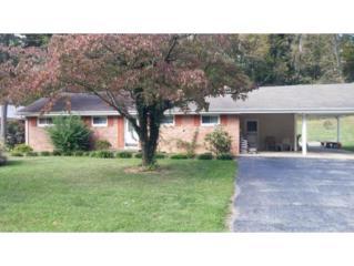 2313 Inglewood Drive, Kingsport, TN 37664 (MLS #387628) :: Jim Griffin Team