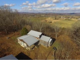 3195 Ottway Rd., Greeneville, TN 37745 (MLS #387696) :: Jim Griffin Team