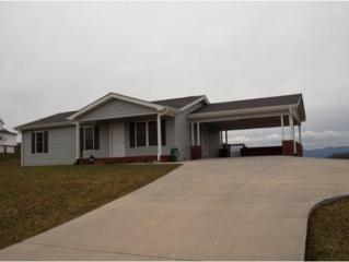 12034 Tanglewood Drive, Glade Spring, VA 24340 (MLS #387766) :: Jim Griffin Team
