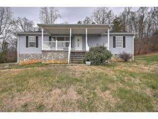 1206 Outer Drive, Greeneville, TN 37743 (MLS #387767) :: Jim Griffin Team