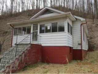 140 Creekside Drive, St. Charles, VA 24282 (MLS #387816) :: Jim Griffin Team