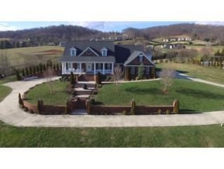 109 Golf Ridge Drive, Kingsport, TN 37664 (MLS #387909) :: Conservus Real Estate Group