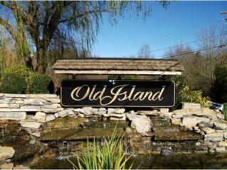 #27 Old Island Trail, Kingsport, TN 37664 (MLS #388586) :: Conservus Real Estate Group