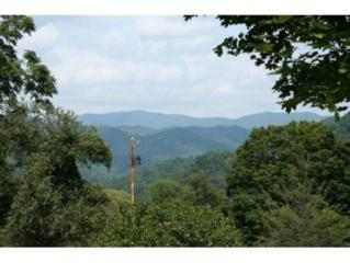 TBD Heaton Creek Road, Roan Mountain, TN 37687 (MLS #389229) :: Jim Griffin Team