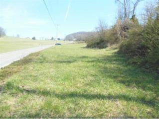 740 Harmony Road, Jonesborough, TN 37659 (MLS #389308) :: Jim Griffin Team