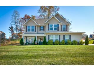 2927 Royal Mile Divide, Kingsport, TN 37664 (MLS #390973) :: Conservus Real Estate Group