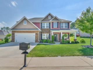 2807 Wallace Court, Kingsport, TN 37664 (MLS #391558) :: Conservus Real Estate Group