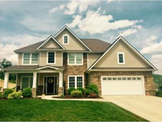 2820 Wallace Court, Kingsport, TN 37664 (MLS #391578) :: Conservus Real Estate Group