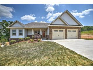 3129 London Road, Kingsport, TN 37664 (MLS #391659) :: Conservus Real Estate Group