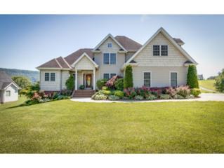 470 S Central Avenue, Church Hill, TN 37642 (MLS #391899) :: Conservus Real Estate Group