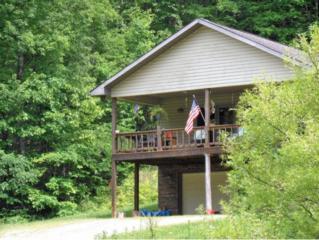 162 Dogwood Lane, Eidson, TN 37731 (MLS #391931) :: Conservus Real Estate Group