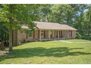 815 Wood Ct., Kingsport, TN 37663 (MLS #391952) :: Conservus Real Estate Group