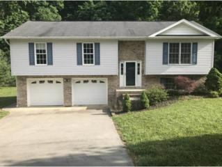 191 Valley Crest Drive, Mt. Carmel, TN 37645 (MLS #391987) :: Conservus Real Estate Group
