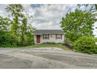 69 Marshall Rd, Bristol, VA 24201 (MLS #392000) :: Conservus Real Estate Group