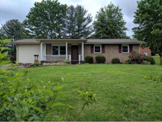 1100 Skyline Dr., Jonesborough, TN 37659 (MLS #392014) :: Conservus Real Estate Group