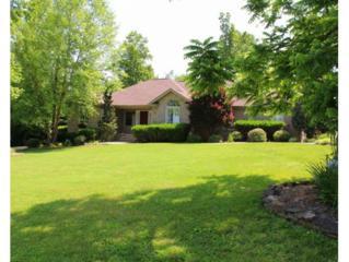 394 Free Hill Road, Gray, TN 37615 (MLS #392037) :: Conservus Real Estate Group