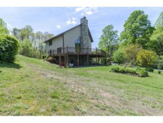 21508 Grindstone Branch Road, Bristol, VA 24202 (MLS #392116) :: Conservus Real Estate Group