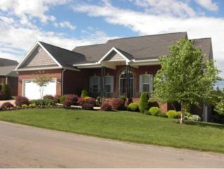 397 Sweetgrass Lane, Jonesborough, TN 37659 (MLS #392173) :: Conservus Real Estate Group